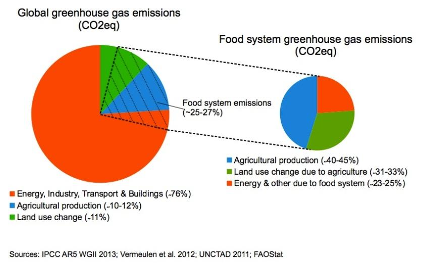 agricultureGlobalWarming